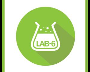 Lab-6 Printing
